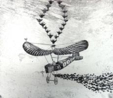 Axel Frohn, Vogelflug