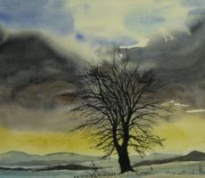 Kurt Lange, Baum
